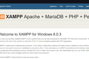 cara-instal-xampp-di-windows-10-hadidsama-image-20